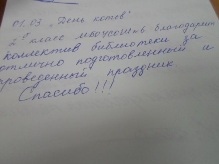 Кошки знают всё_Красная Поляна (14)