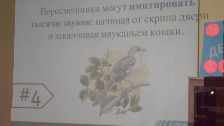 Международный день птиц_Красная Поляна (1)