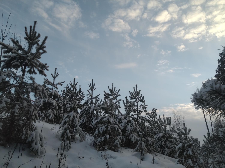 "\""Зимняя сказка\""  Видео прогулка-4"