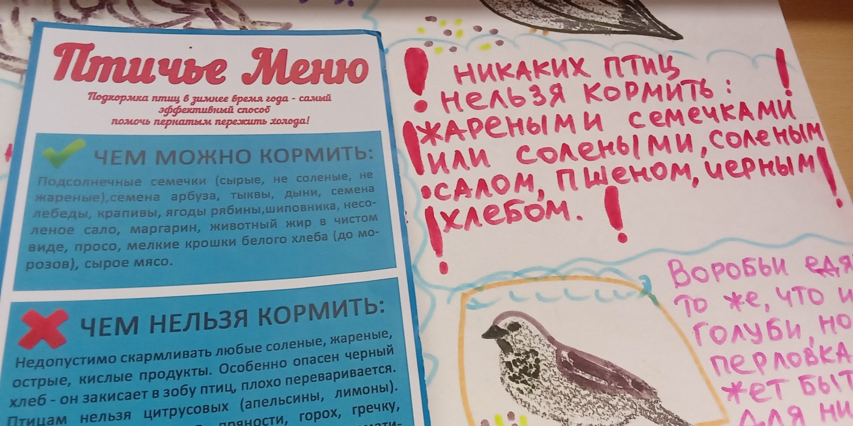 """Открытие и обзор выставки комиксов \""""Покормить и не навредить\"""".-5"""