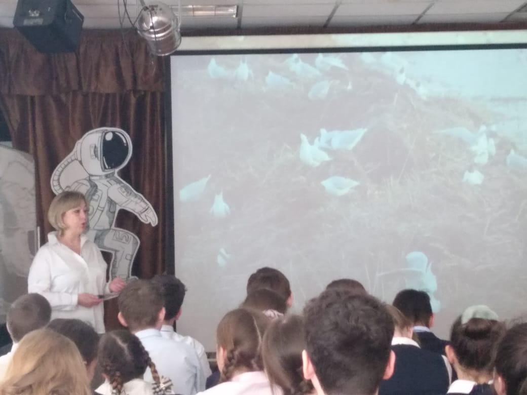 Озеро Киово -   Интерактивная лекция