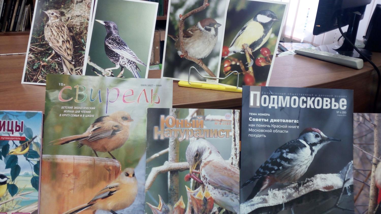 Птицы наших лесов -  Встреча с орнитологом-любителем-1