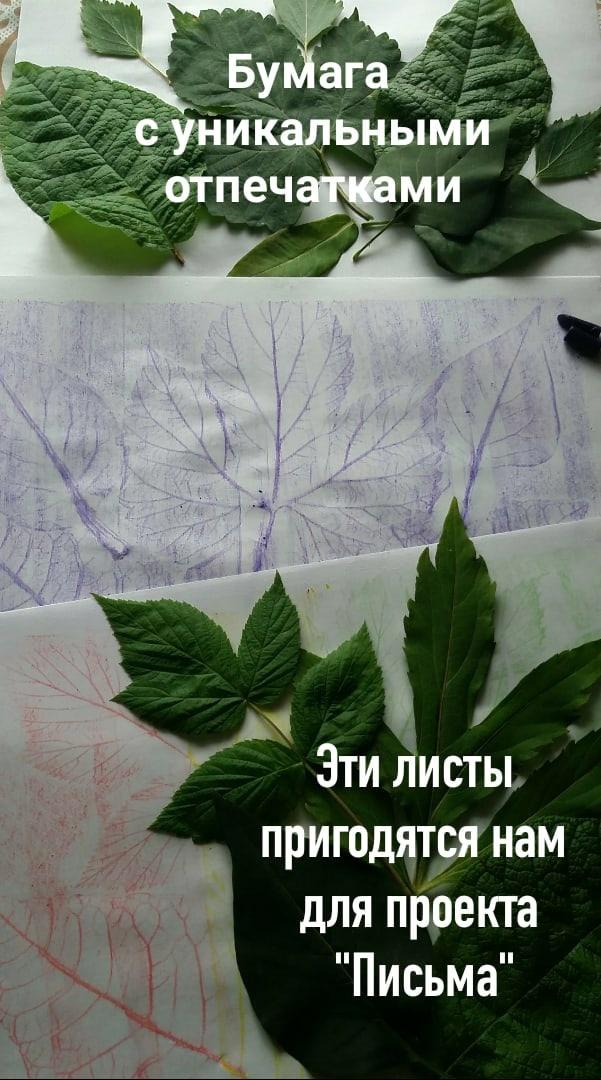 """Центральная библиотека \""""Светоч\""""-4"""